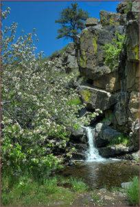 Lory Falls
