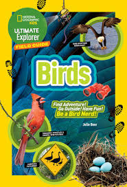 Birds by Julie Beer Cover