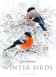 Winter Birds Cover