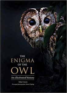 the Enigma of the Owl Cover